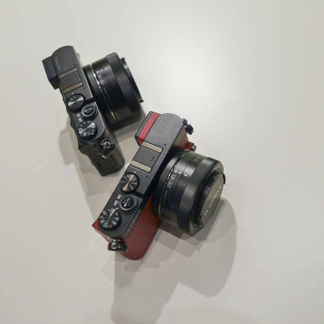 P9950083.jpg