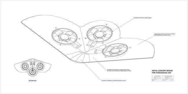 bio-drone-01.jpg
