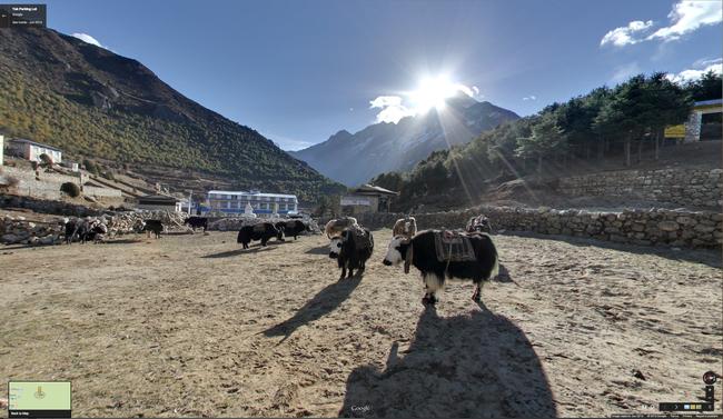yak-parking-lot.png