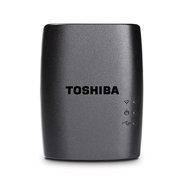 Toshi 2.jpg