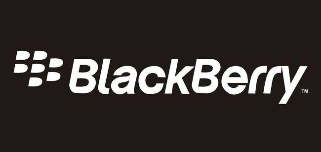 BlackB 3.JPG