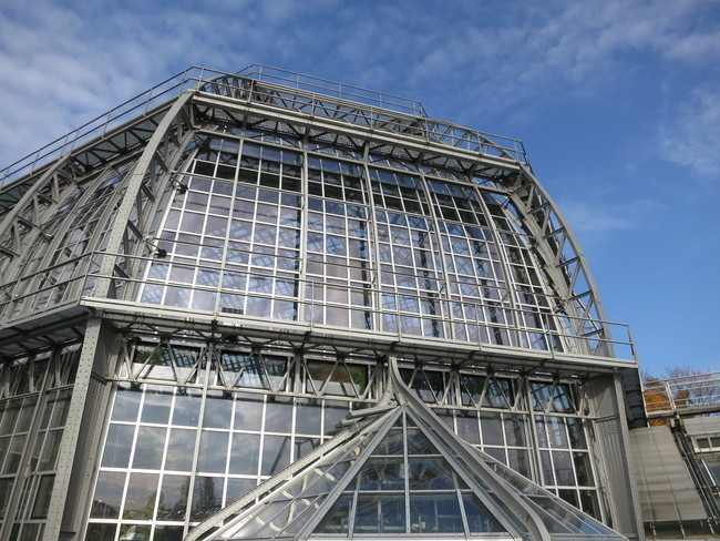 Structure100.JPG