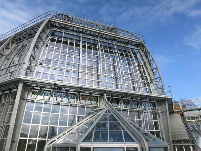 Structure1600.JPG