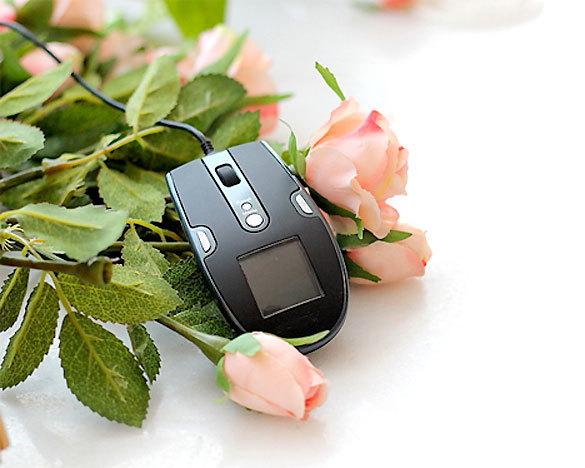 PhotoFrame-mouse-01.jpg
