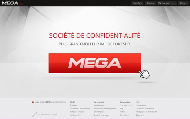 mega2.jpg