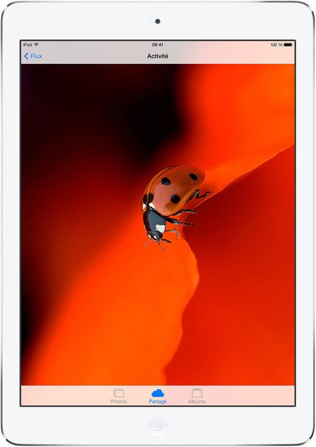iPad_Air-05.jpg