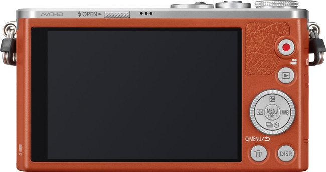Panasonic_GM1-01.jpg