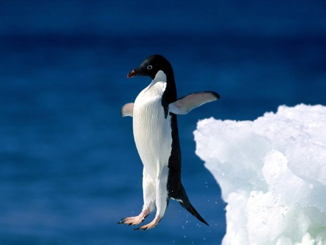Valve_Linux.jpg