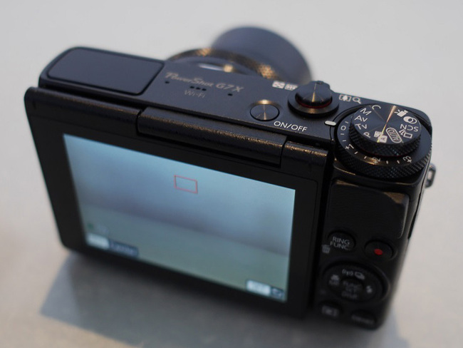 P9940952-vweb.jpg