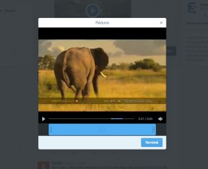 video web twitter editeur
