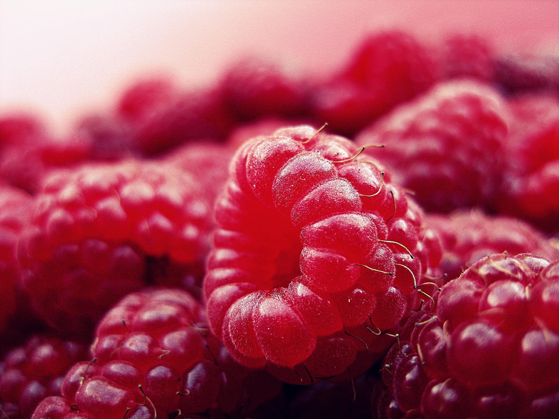 raspberry-427390_1920