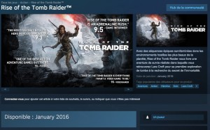 rise of tomb raider windows