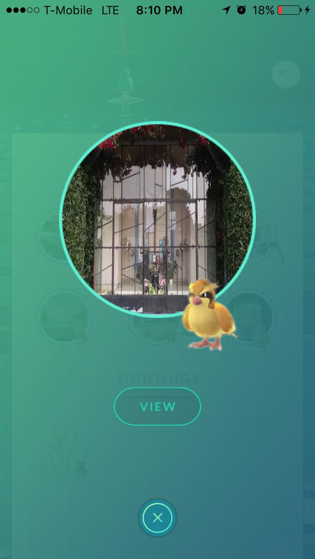 pokemon go photo 2 - Pokemon Go se dote d'un radar dans sa nouvelle mise à jour !