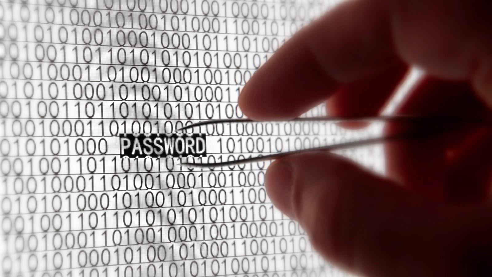 Pirate Informatique Password