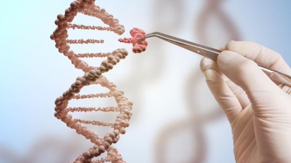 Des chercheurs chinois annoncent la naissance de deux bébés génétiquement modifiés