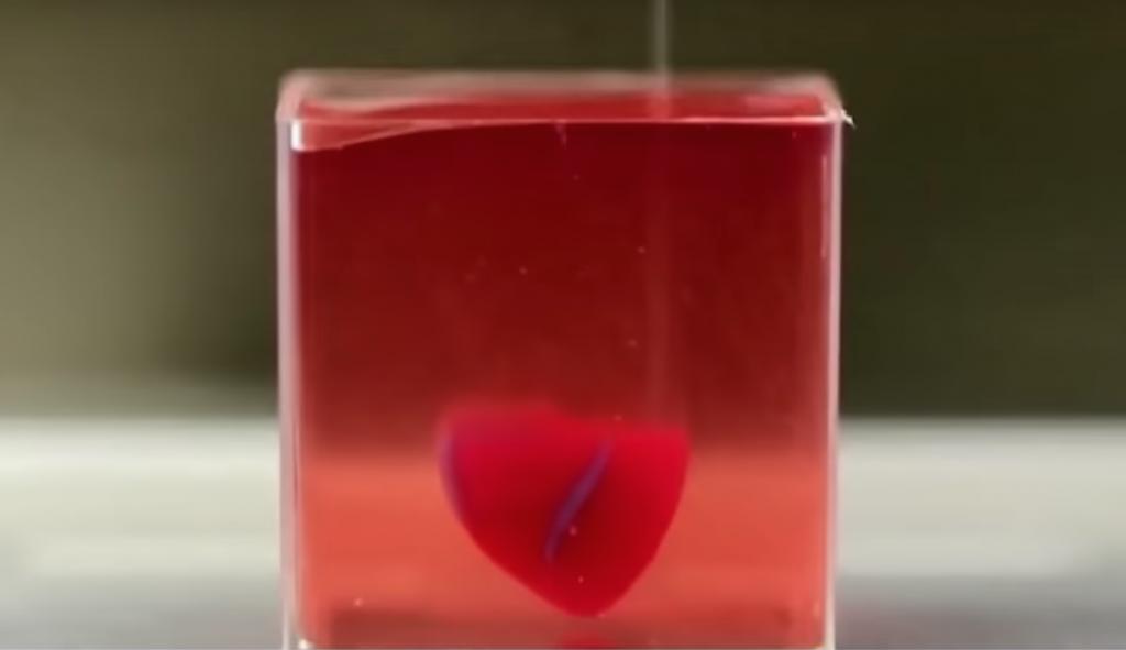 Coeur impression 3D